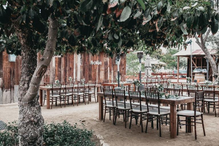 Forgotten Barrel Winery Wedding