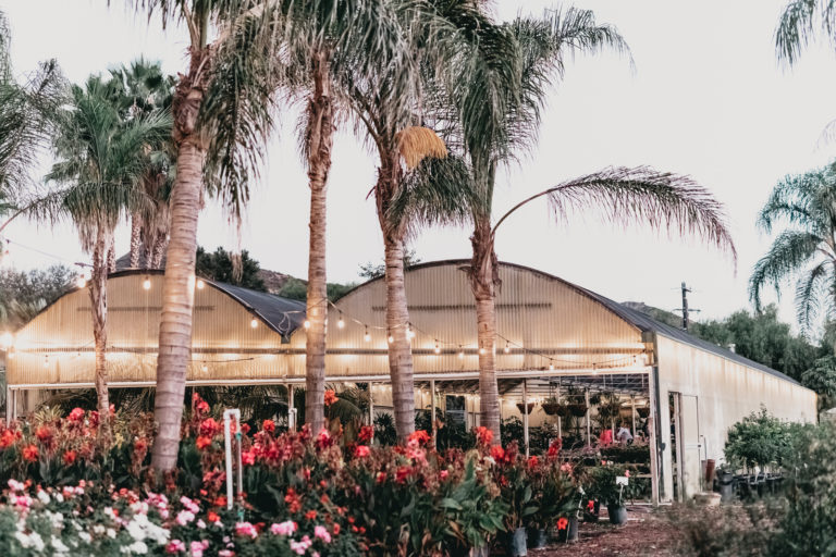 Plantenders Nursery Wedding